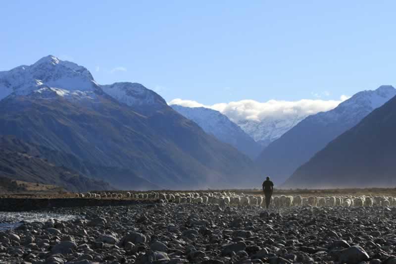 NZ Riverbed