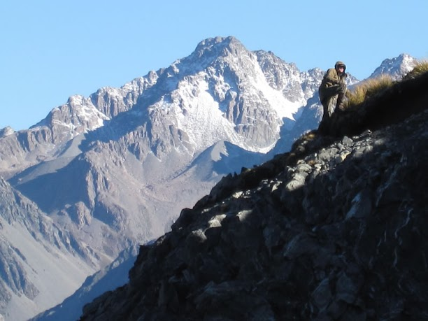 Alpine Hunting New Zealand Will Patterson Outfitter Professional Hunter Hunting