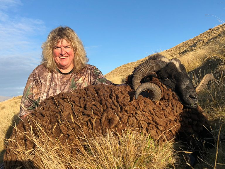 Arapawa Ram Hunting New Zealand Cynthie Fisher SCI 115.75