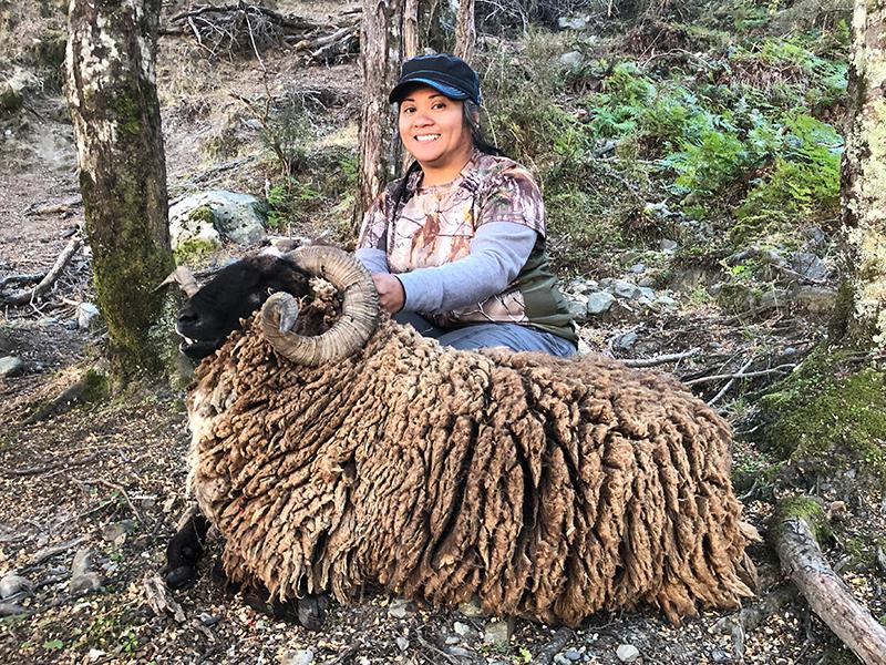 Arapawa Ram Gena Wandersee SCI 105 Hunting IN New Zealand