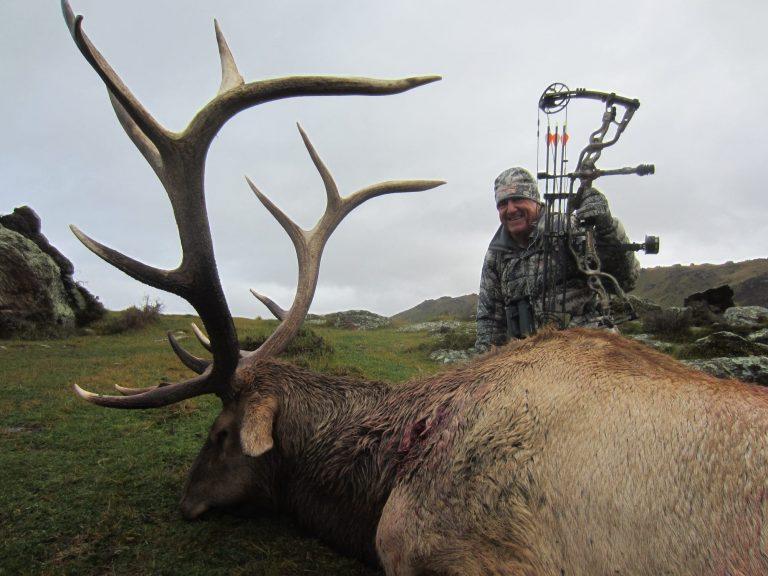 Elk Joe Martin SCI 393