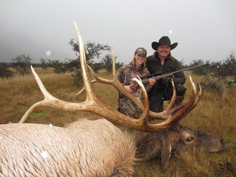 Elk Samantha Newsom SCI 352