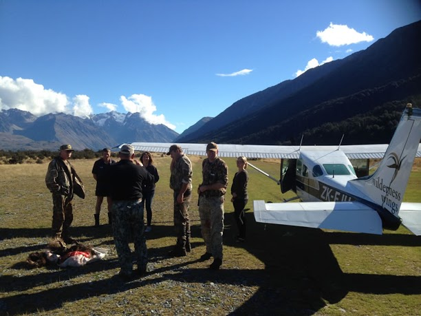 Hunting New Zealand Aviation