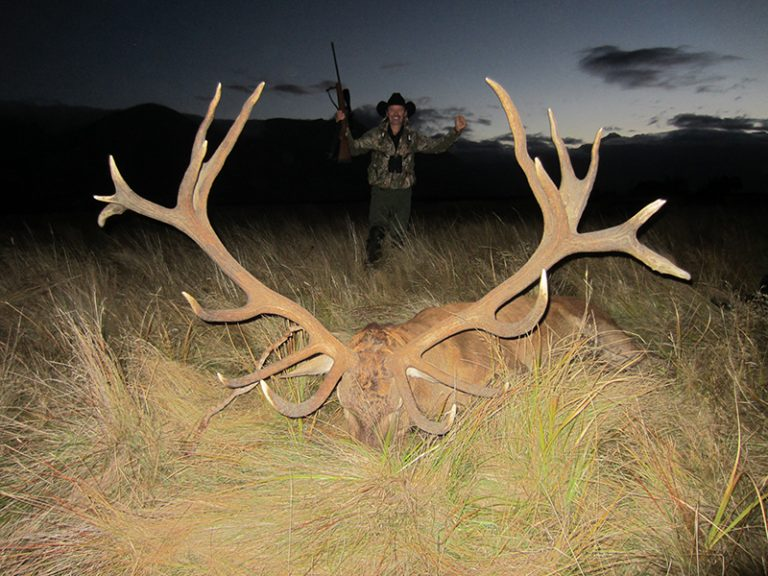 Red Stag Colorado Buck SCI 413