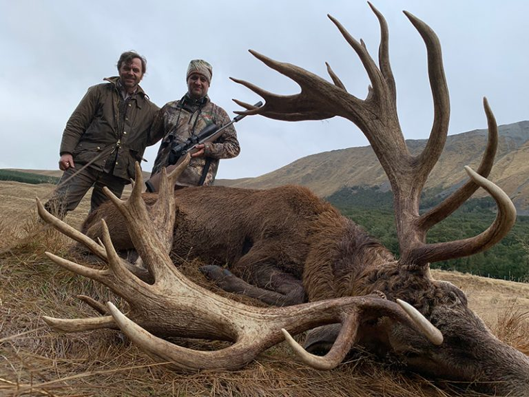 Red Stag Matar SCI 544