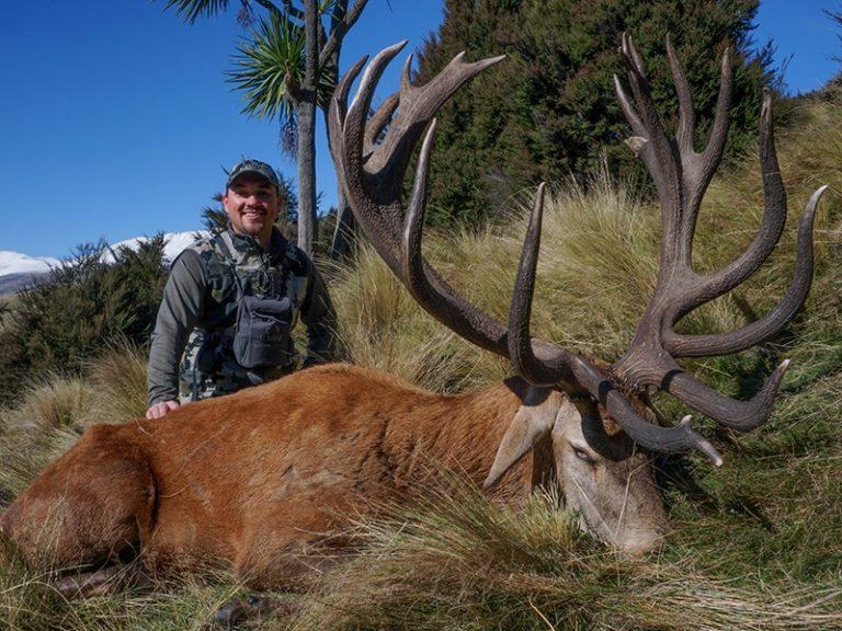 Red stag Garrett Roy SCI 380