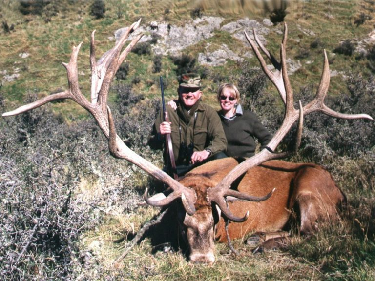 World Record Red Stag New Zealand Outside Spread 71.5 Inches SCI 432.625